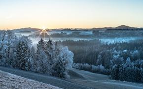 Картинка зима, свет, утро