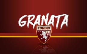 Картинка wallpaper, sport, logo, football, Torino, Serie A, Granata