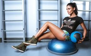 Обои training ball, девушка, gym, брюнетка, pose, Santa Dimopulos, Санта Димопулос, певица, fitness, workout, мяч, crossfit