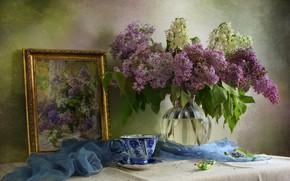 Картинка ветки, картина, шарф, чашка, ваза, натюрморт, сирень