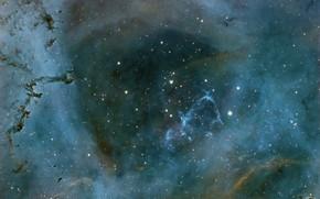 Картинка космос, NGC 2237, туманность розетка