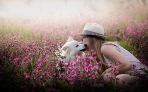Картинка девушка, цветы, собака, весна