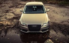 Обои Audi, Авто, Ауди, Лес, Машина, Капот, Грязь, Седан, Автомобиль, Sedan, Передок, Audi A4, Бревна, Немец, ...