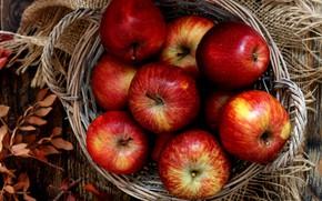 Картинка корзина, яблоки, плоды