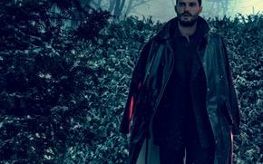 Картинка зима, лес, снег, деревья, снежинки, костюм, актер, пальто, Jamie Dornan, Джейми Дорнан, Norman Jean Roy, …