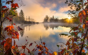 Обои Lake, Forest, Autumn, RED