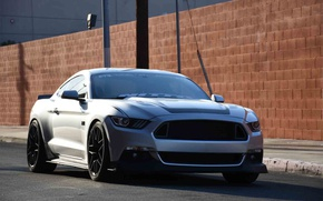 Картинка car, Mustang, Ford, Ford Mustang, RTR, Ford Mustang RTR
