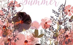 Обои надпись, summer, текстура, вектор, цветы