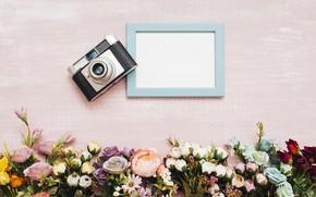 Картинка цветы, фон, рамка, Фотоаппарат