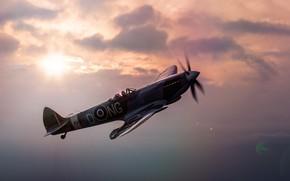 Картинка истребитель, разведчик, Supermarine Spitfire, перехватчик, LF Mk