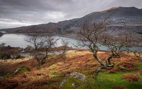 Картинка облака, деревья, пейзаж, горы, озеро, Уэльс, Сноудония