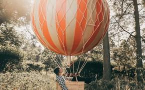 Обои Adam Bird, Up Up and Away, лес, воздушный шар