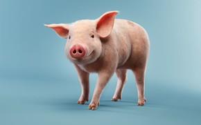 Обои поросёнок, детская, рендеринг, улыбка, свинюшка, luis ramos, Pig