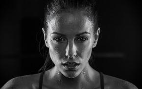 Картинка brunette, Melissa Riso, Perspiration, female athlete