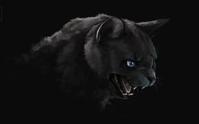 Картинка тьма, пасть, клыки, черный кот, art, злобный взгляд, Brevisart