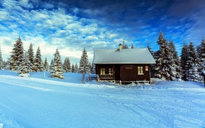 Картинка зима, лес, небо, снег, дом, ели, sky, winter, Czech Republic, Liberec, Smedava