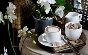 Картинка кофе, чашка, сахар, орхидея