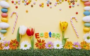 Картинка цветы, фон, праздник, яйца, пасха, тюльпаны