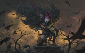 Обои птицы, перья, вороны, девушка