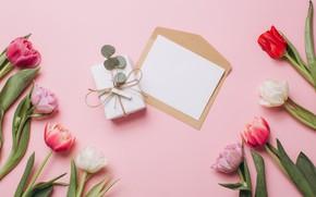 Картинка письмо, цветы, фон, подарок, тюльпаны, Праздник