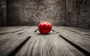 Картинка яблоко, еда, фрукт