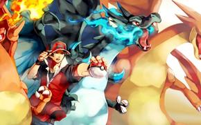 Картинка flame, game, anime, wings, boy, dragon, fang, asian, player, Pokemon, pokeball, manga, japanese, oriental, asiatic, …