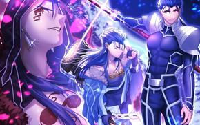 Картинка аниме, арт, парень, Fate Stay Night, Fate/Stay Night, лансер, кастор