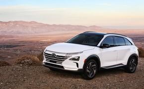 Картинка Hyundai, 2018, кроссовер, CES, Nexo