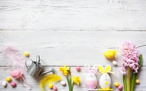 Картинка цветы, весна, colorful, Пасха, крокусы, wood, flowers, нарциссы, spring, Easter, eggs, decoration, Happy, яйца крашеные