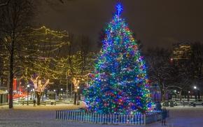 Обои праздник, новый год, елка, огни