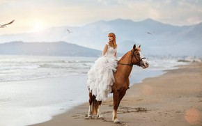 Обои конь, лошадь, Alessandro Di Cicco, море, настроение, девушка, Roberta Poccafassi, платье, чайки