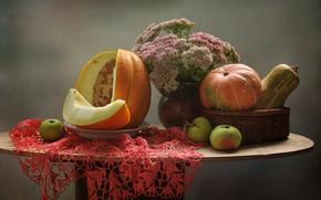 Картинка осень, цветы, яблоки, тыква, натюрморт, сентябрь, дыня, очиток