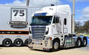 Обои white, Freightliner, tractor, Argosy