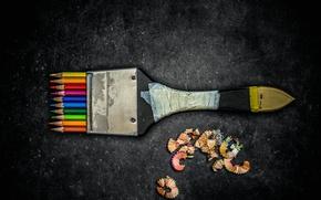 Картинка карандаши, кисть, стружка, Creative edit