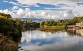 Картинка зелень, лето, солнце, облака, деревья, мост, река, Ирландия, Kerry, Killorglin