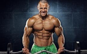 Картинка поза, татуировка, muscle, мышцы, штанга, tattoo, пресс, бодибилдер, abs, bodybuilder, фон стена