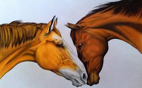 Картинка нежность, рисунок, кони, пара, живопись, рыжая и гнедой