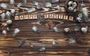 Картинка буквы, яйца, перья, пасха, гнездо, Праздник