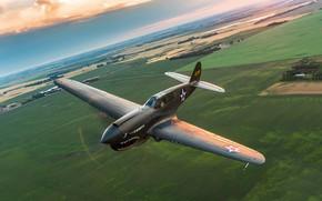 Обои полет, истребитель, P-40, Warhawk