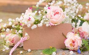 Обои romantic, розы, бутоны, roses, лепестки, flowers, pink