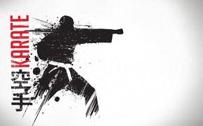 Картинка фон, воин, удар, пояс, мужчина, кимоно, Карате, единоборство