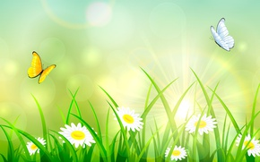 Картинка лето, трава, бабочки, ромашки