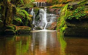 Картинка вода, река, камни, мох