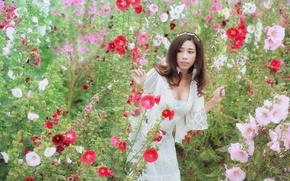 Картинка цветы, платье, декольте, Brode十三