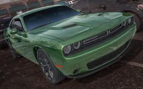 Картинка зеленый, Dodge, Challenger