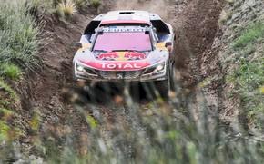 Обои Спорт, Скорость, Гонка, Грязь, Peugeot, Фары, Red Bull, Rally, Ралли, Sport, DKR, 3008, Шёлковый путь, ...