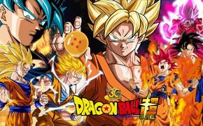 Картинка DBS, game, alien, anime, asian, manga, powerful, Dragon Ball, strong, 003, Dragon Ball Super, japonese