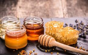 Картинка соты, баночки, ложка, мёд