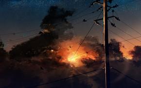 Обои столб, рассвет, Y_Y, птицы, art, звездное небо, восхода солнца, провода, тучи