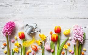 Картинка цветы, весна, colorful, Пасха, крокусы, тюльпаны, wood, flowers, tulips, нарциссы, spring, Easter, eggs, decoration, Happy, …